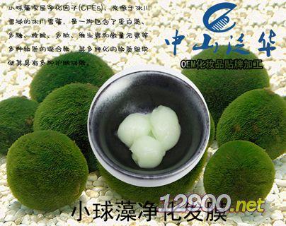 小球藻净化发膜