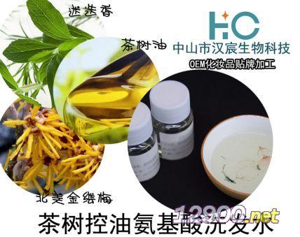 茶树控油氨基酸洗发水