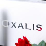 韩国品牌化妆品OXALIS5件套